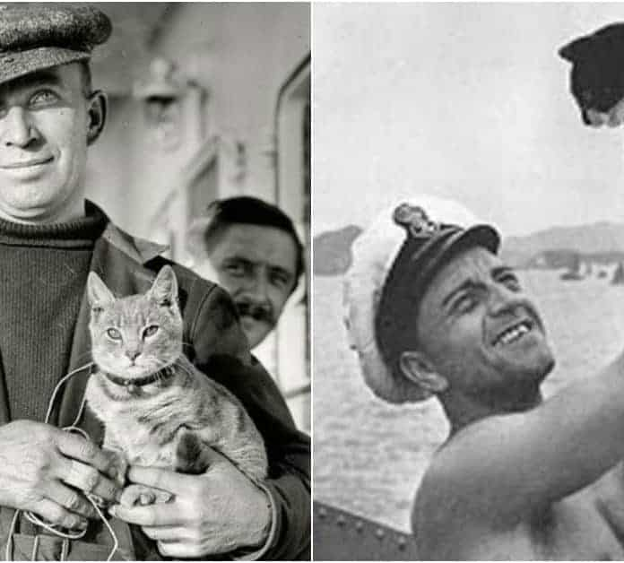 9 Lives: The Tale of Unsinkable Sam and 9 Other Cats that Sailed the High Seas